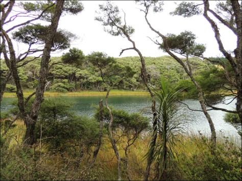 Lake Ototoa, South Head