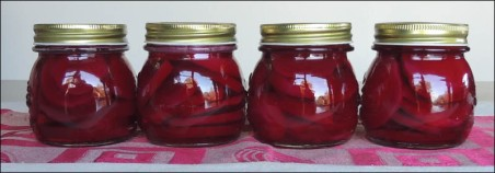 Freshly pickled beetroot