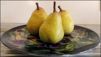 Pears are falling daily from the old pear tree.
