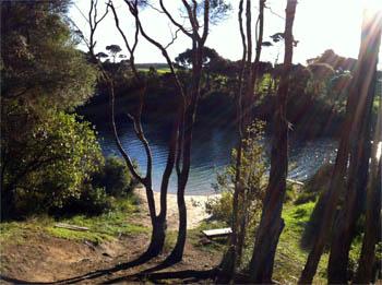 Lake Rototoa, May 2014