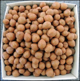 2014 crop of Macadamia nuts.