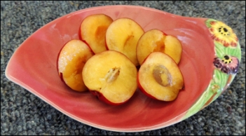 Our lovely yellow-fleshed, red-skinned plums.