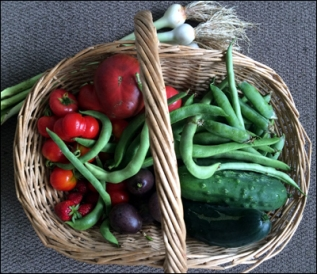 Late summer vegetables