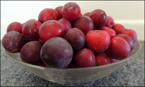 Juicy, red plums