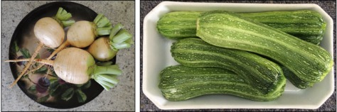Golden Turnip and Zucchini - summer staples