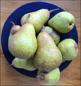 Juicy pears.