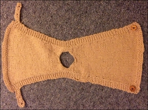 The completed hen tunic.