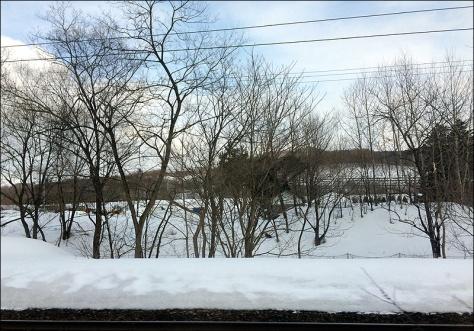 train view 03