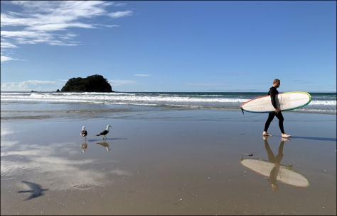surfer and bird